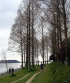 佐鳴湖の写真