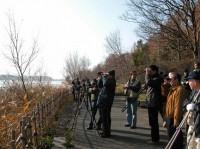 日本野鳥の会写真